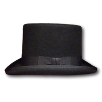 Wool Felt Top Hat
